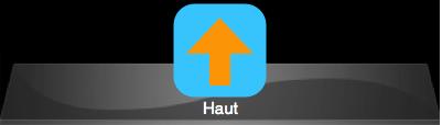 Haut.png