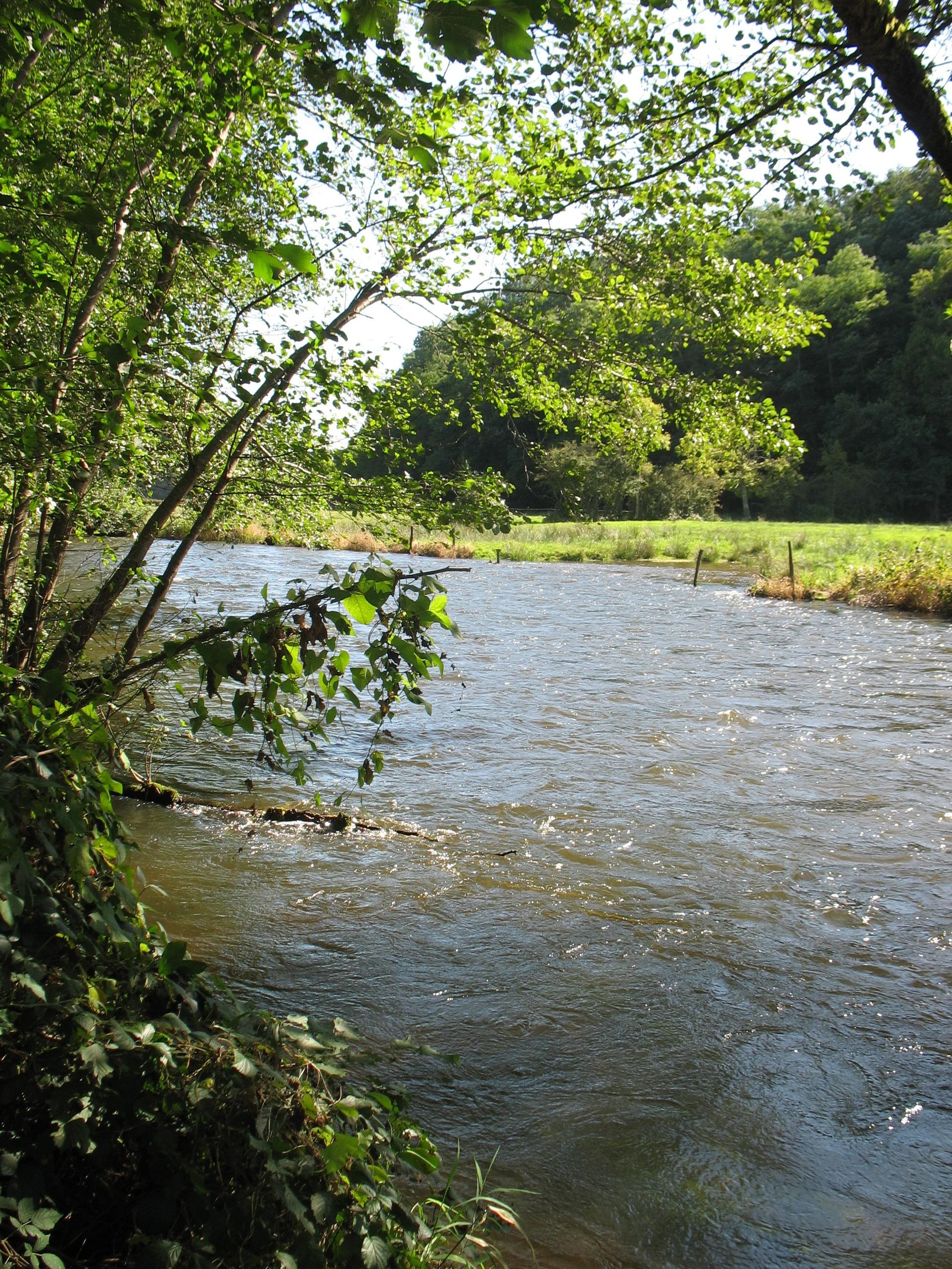 Yonne (rivière) » défini et expliqué aux enfants par les enfants