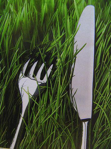 Une fourchette et un couteau - Fourchette a droite ou a gauche ...