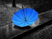 Parapluie bleu-3299.jpg
