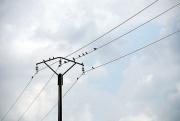 Fil électrique -9510.jpg