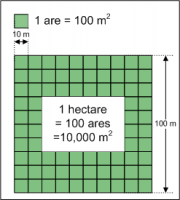 Hectares et ares.png