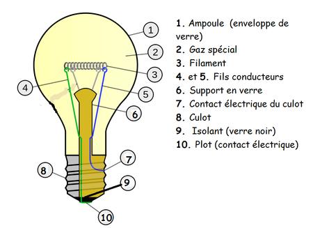 schéma descriptif d'une ampoule