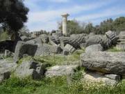 Temple de Zeus Olympie.jpg