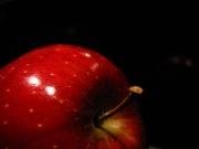 Rött äpple-352.jpg