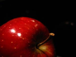 Fil:Rött äpple-352.jpg