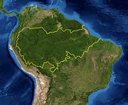 Forêt amazonienne-Foret amazonienne-Amazonie.jpg
