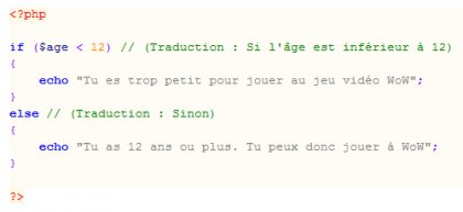 Code-PHP-Langage-de-programmation-php.png