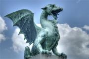 Dragon-1738.jpg