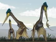 Reconstitution Quetzalcoatlus.png