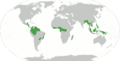 Forêts tropicales-forets-localisation.png