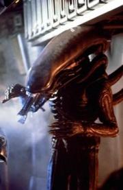 extraterrestre wikimini