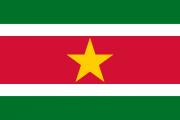 Drapeau-Suriname.png