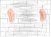 Mur oreilles.png