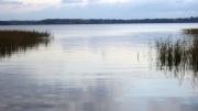 Lac Saimaa.jpg