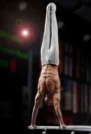Gymnastique artistique-gymnaste-barres parallèles-musculature-force.jpg