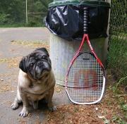 Raquette Tennis -4196.jpg